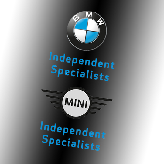 BMW MINI Specialist